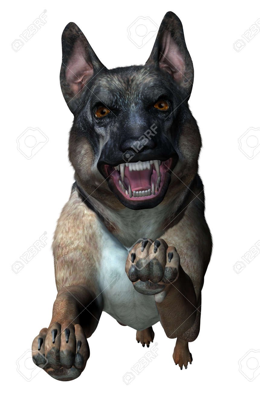 German Shepherd Attacks - 3D Render Stock Photo - 11711068
