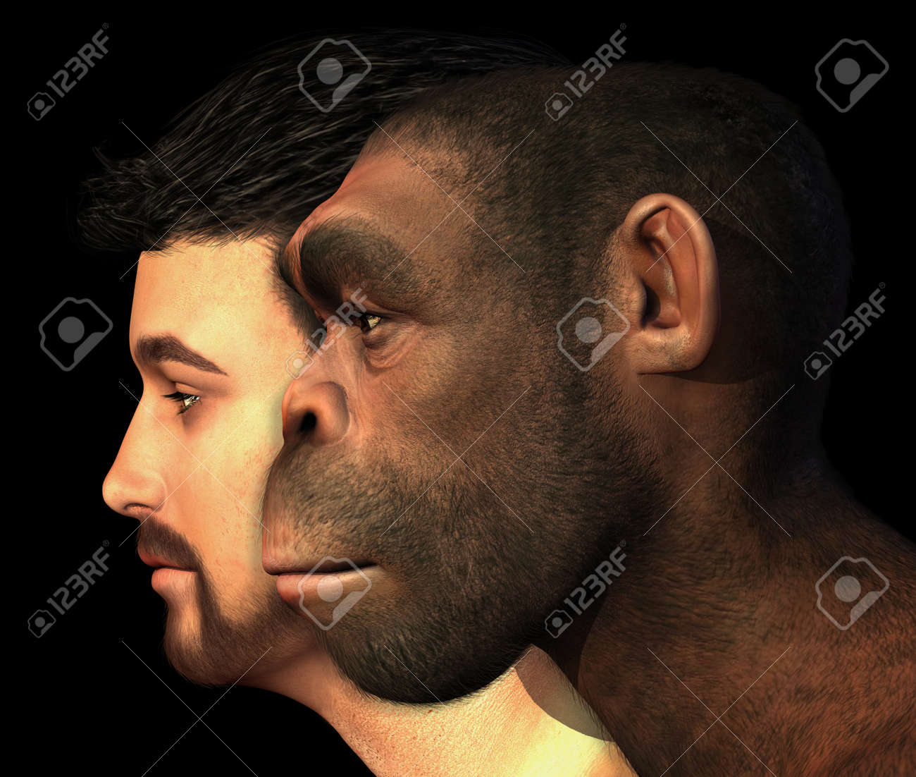 A portrait of a modern human and a Homo Erectus man side-by-side - 3D render with digital painting - 16451654