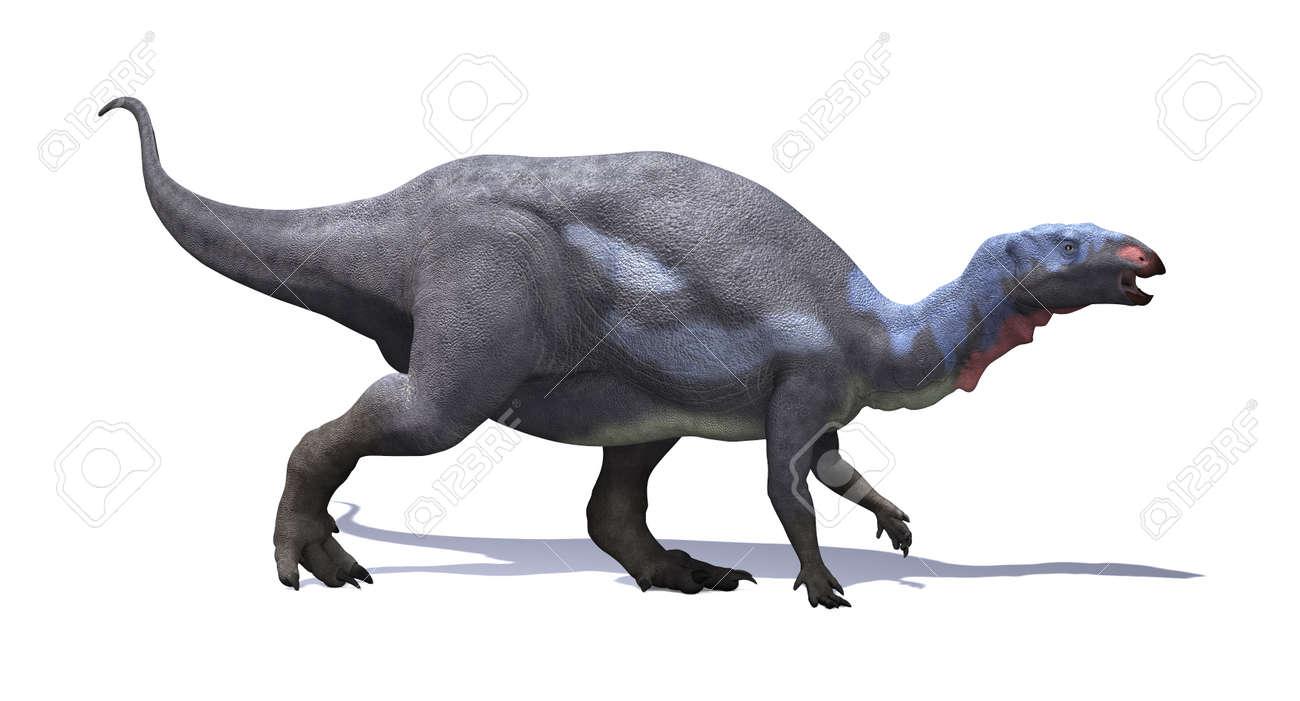 El Camptosaurus Era Planta Comer Dinosaurios Ornitisquios Picuda Que Vivio Durante El Periodo Jurasico Tardio Fotos Retratos Imagenes Y Fotografia De Archivo Libres De Derecho Image 33576437 Los ornitisquios (ornithischia), que en griego significan «caderas de ave», es uno de los dos órdenes de dinosaurios que vivieron desde el triásico superior hasta el cretácico superior. 123rf