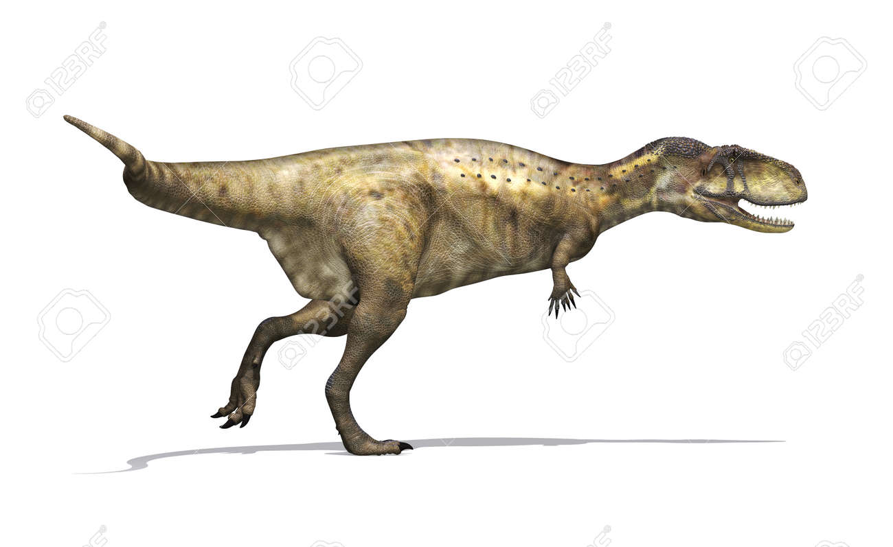 Image result for abelisaurus
