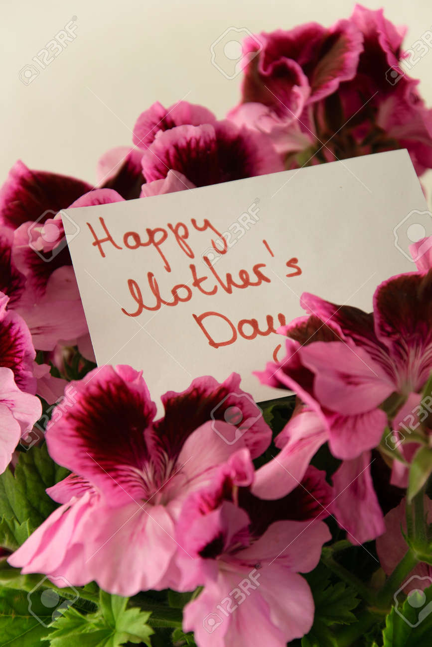 Close Up Of Beautiful Fresh Flowers With Greeting Card For Mothers