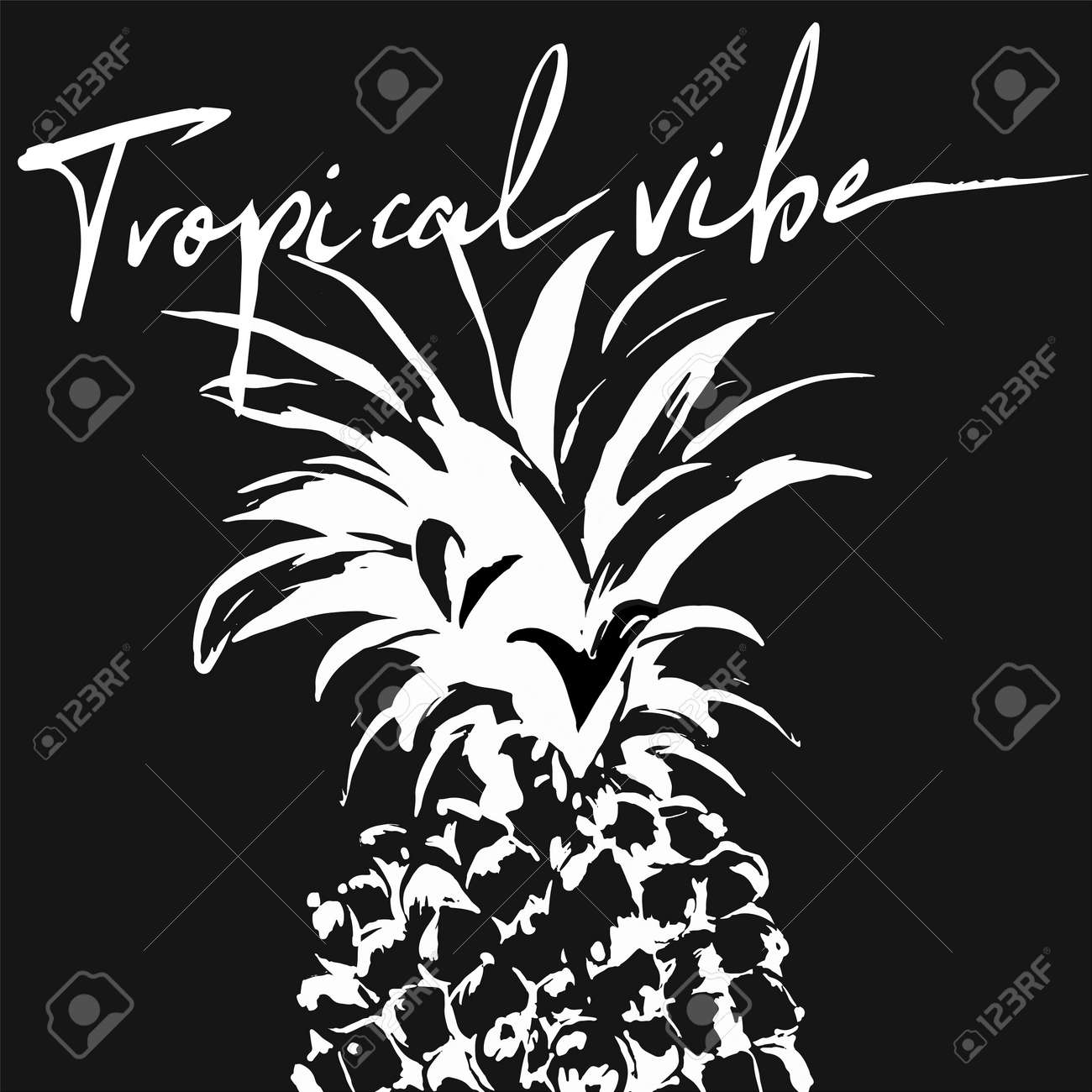 Vector illustration of white graphic pineapple with text on black background. Perfect for poster, print on t shirt for men, weman, kids. Invintation or banner design in tropical style. - 154725359