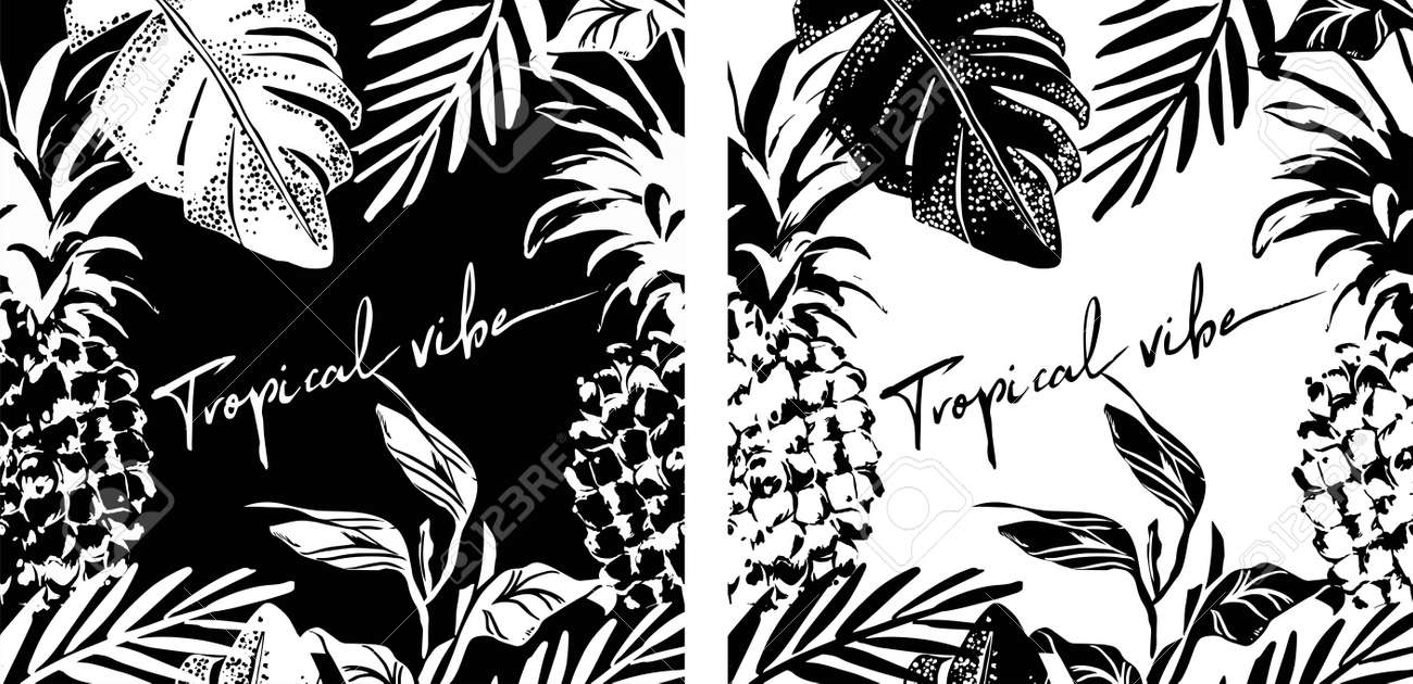 Summer tropical leaves and pineapple poster design in black and white colors, vector illustration. Graphic poster. Collection, set of tropical covers.Perfect for t shirt print, banner. - 154727934
