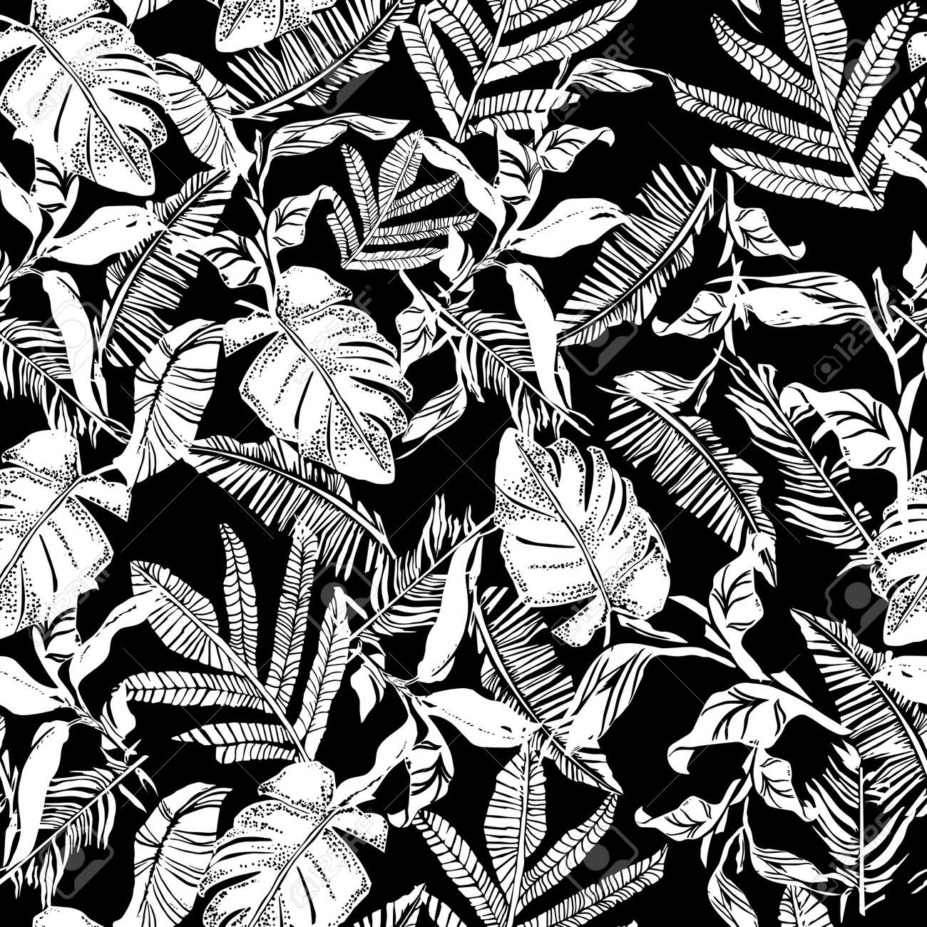 Vector seamless pattern with compositions of graphical tropical leaves, palm leaves,banana leavesand jungle plants. Beautiful black and white tropical seamless background - 154727953