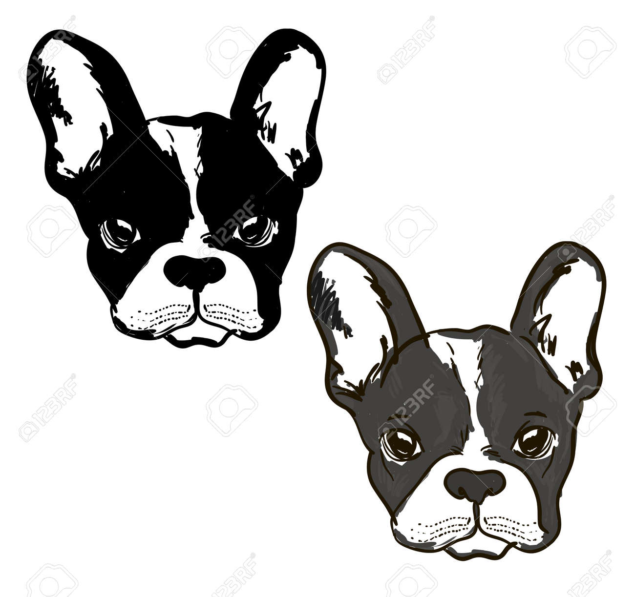 Cute dog Muzzle of frenchie buldog with bunny ears in black & white colors illustration. - 154727954