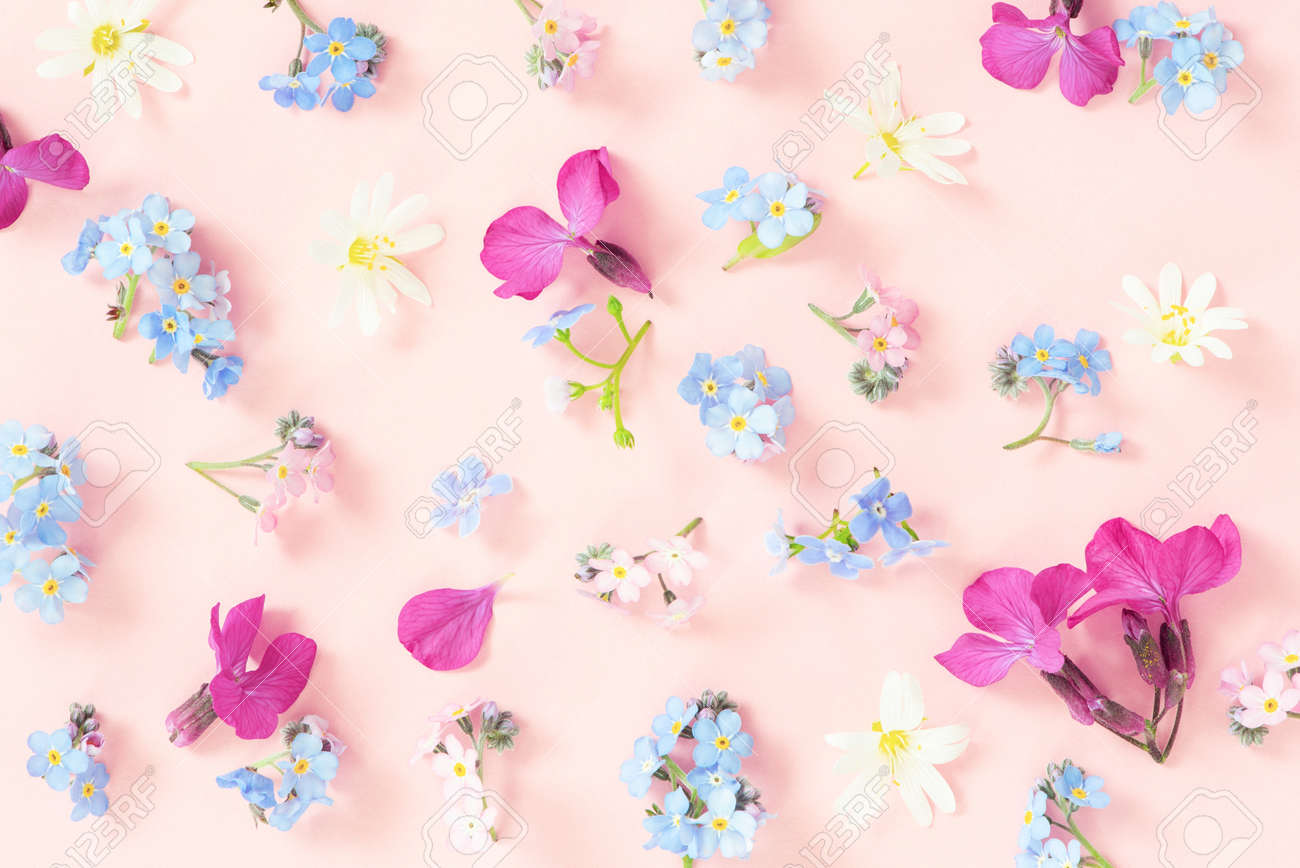 Pattern made of fresh flowers, tender pink composition - 168917305