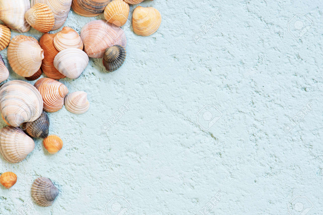 Seashells on the blue textured background, abstract travel top view composition - 168917546