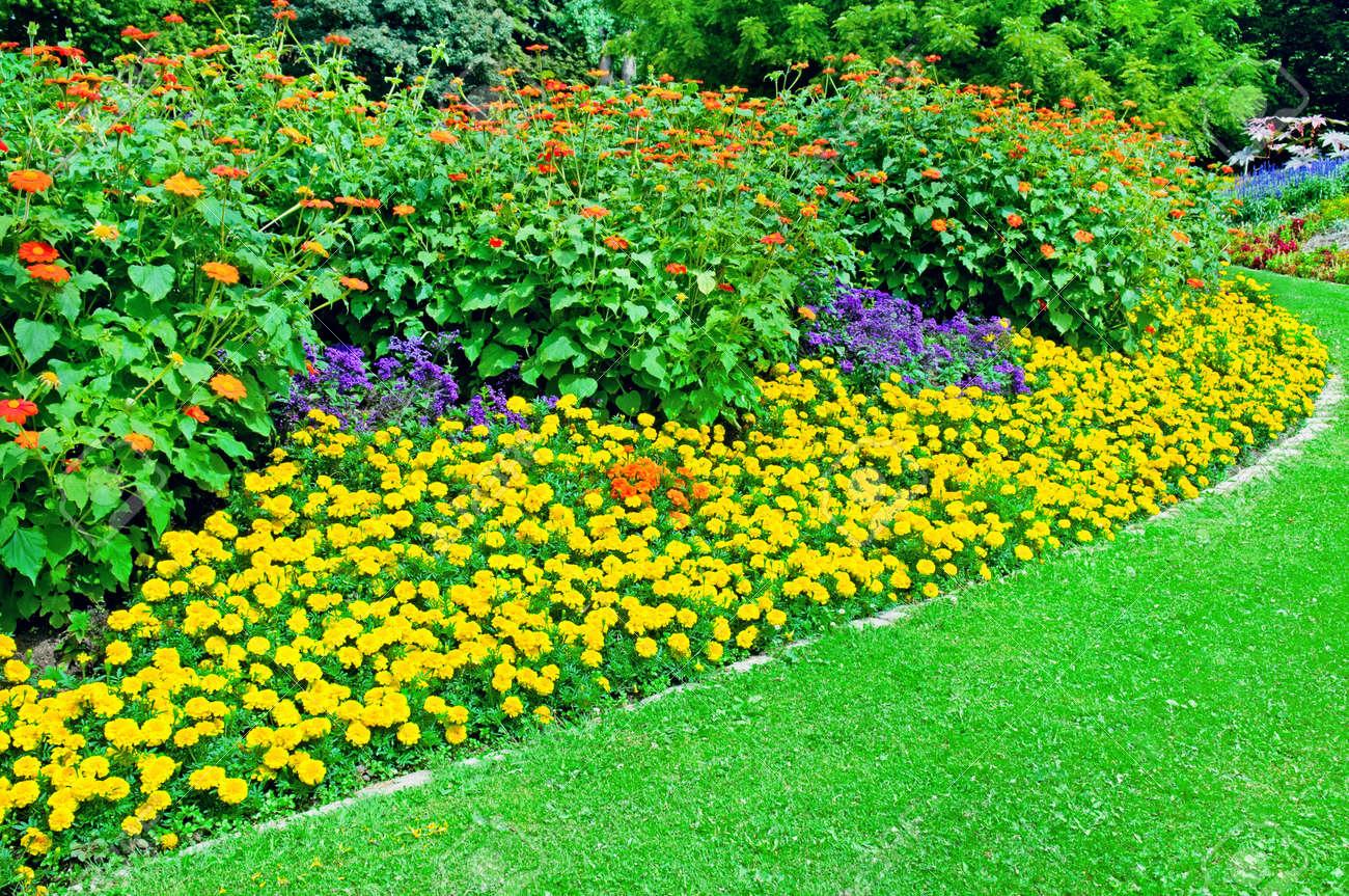 Image De Parterre De Fleurs beau parterre de fleurs dans le parc l'été