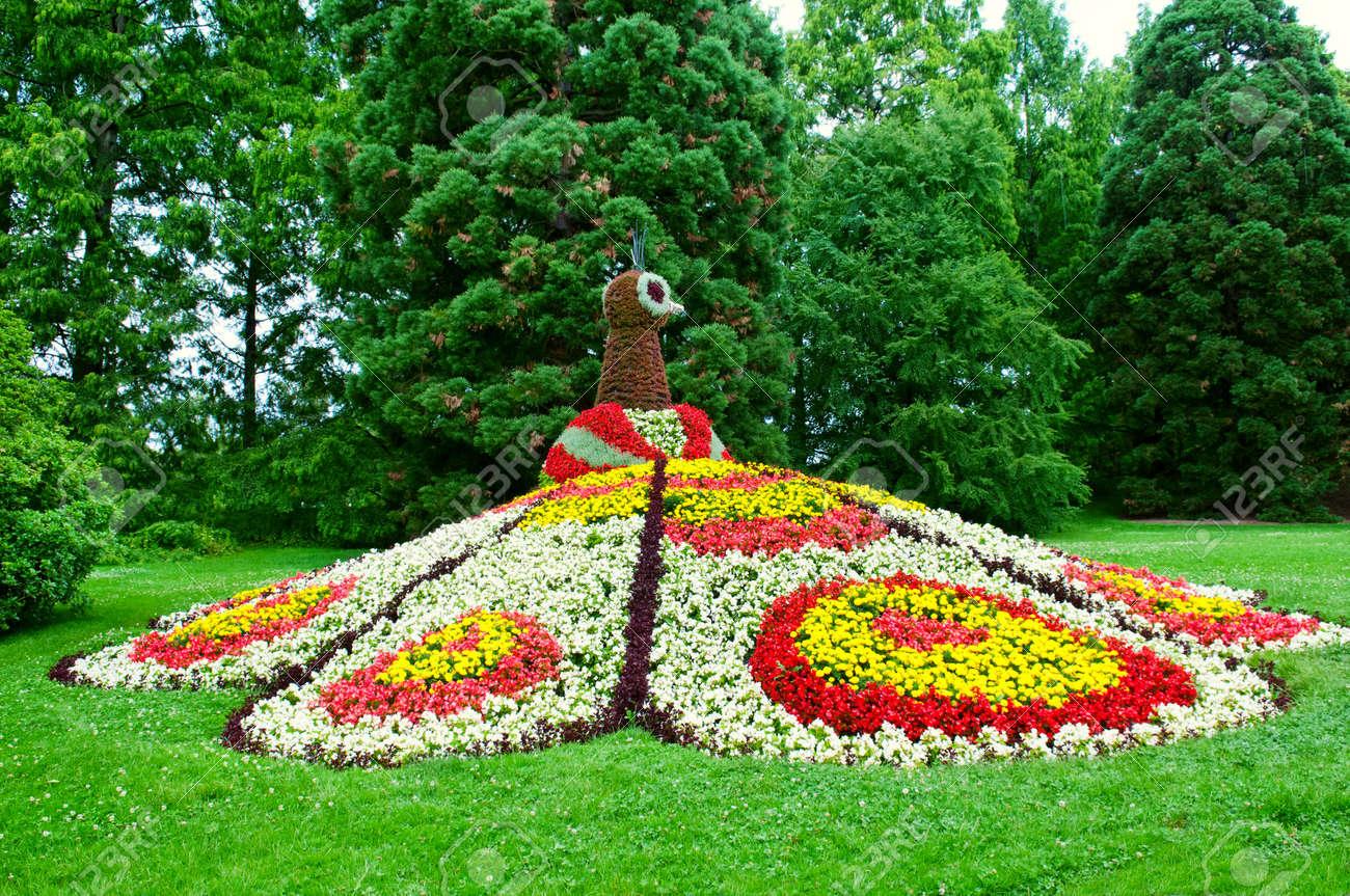 Image De Parterre De Fleurs jardin de fleurs. peacock parterre de fleurs. Île de mainau, lac de  constance allemand