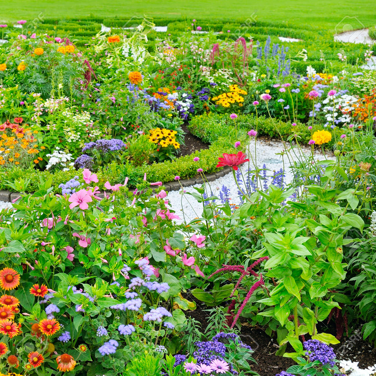 Stock Photo   Summer Flower Bed And Green Lawn