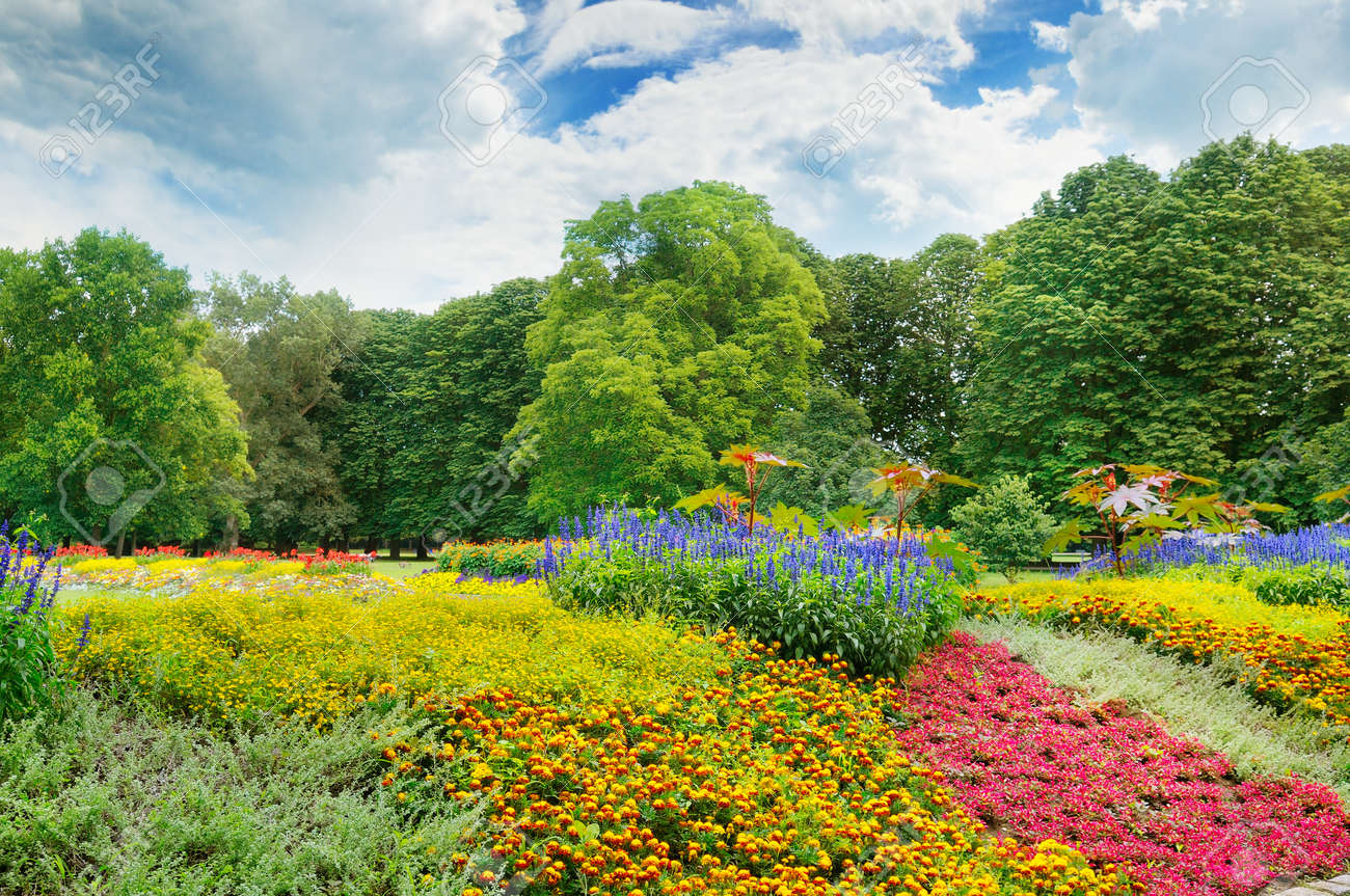 Summer Park With Beautiful Flower Beds And Sky Stock Photo Picture