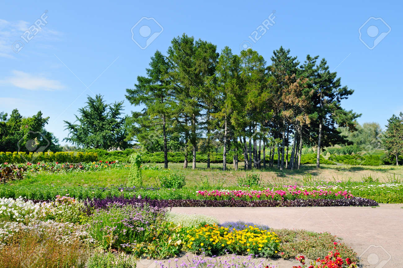 Summer Park With Beautiful Flower Beds A Bright Sunny Day Stock