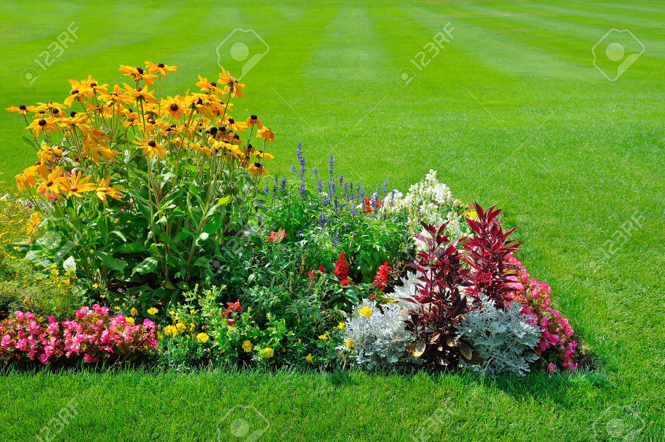 Scenic View of Colorful Flowerbeds, a Lush Green Lawn and a Winding Grass - 135398065