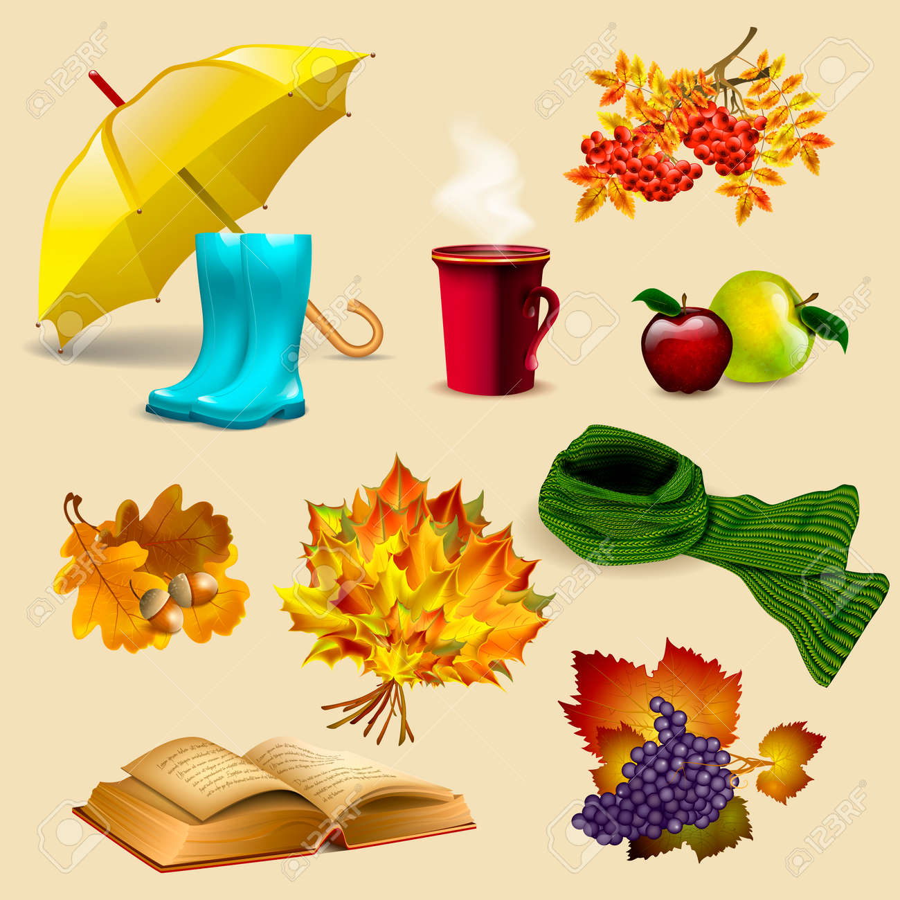 5747c9941cb Set of autumn elements and objects, autumn leaves, fruits, umbrella, boots,