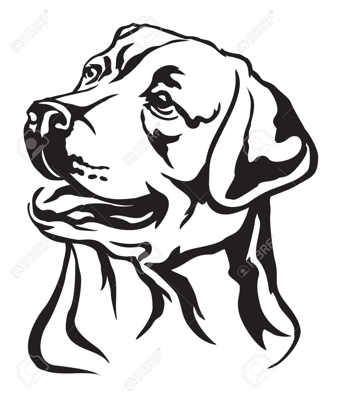 Black Dog Stock Illustrations Cliparts And Royalty Free Black Dog