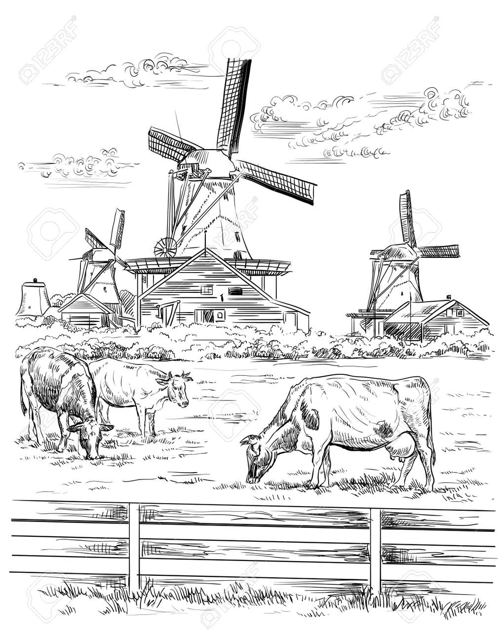 Vector hand drawing Illustration of watermill in Amsterdam (Netherlands, Holland). Landmark of Holland. Watermill and cows grazing on the meadow. Vector hand drawing illustration in black color isolated on white background. - 126144187