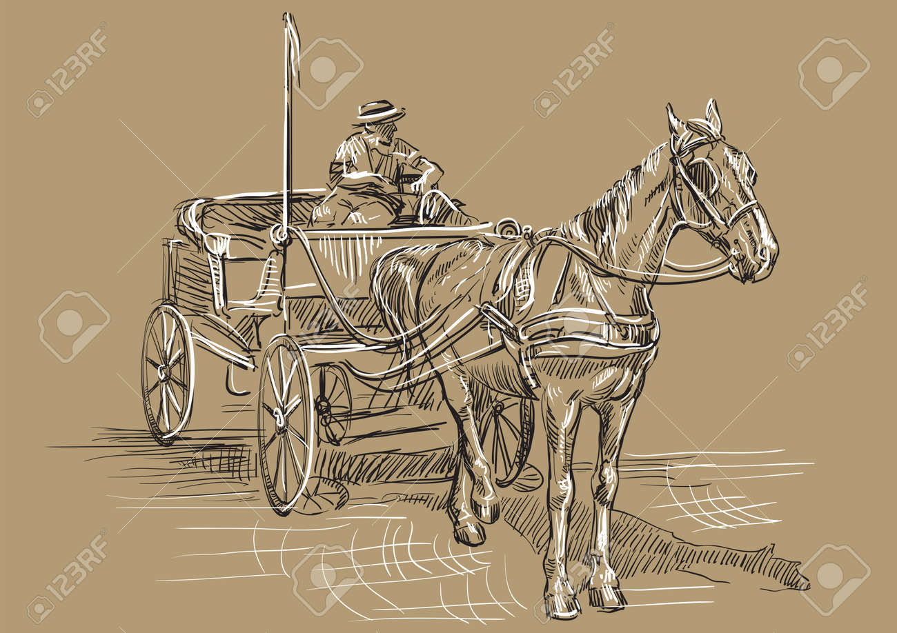 Vector Hand Drawing Illustration Horse Drawn Carriage With Coachman Royalty Free Cliparts Vectors And Stock Illustration Image 119456738