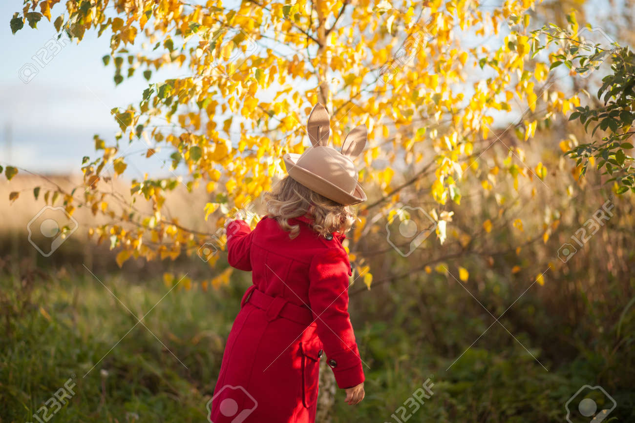 714d3a4f1 Adorable cute happy caucasian toddler girl walking in the autumn..