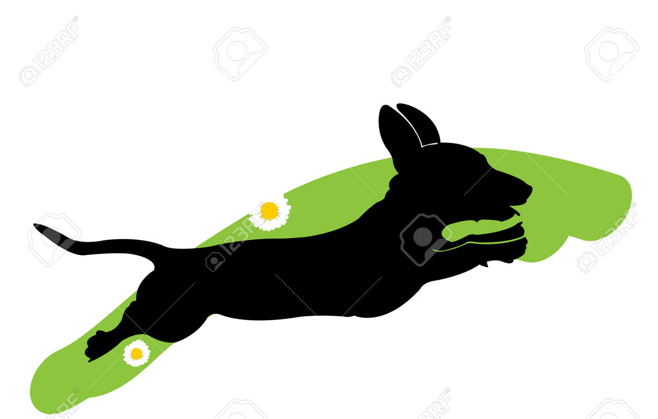 Silhouette Of Running Dachshund Dog On The Green Grass With Flowers Stock Vector