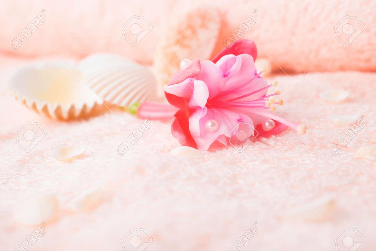 concept de voyage avec délicate fleur rose fuchsia, des