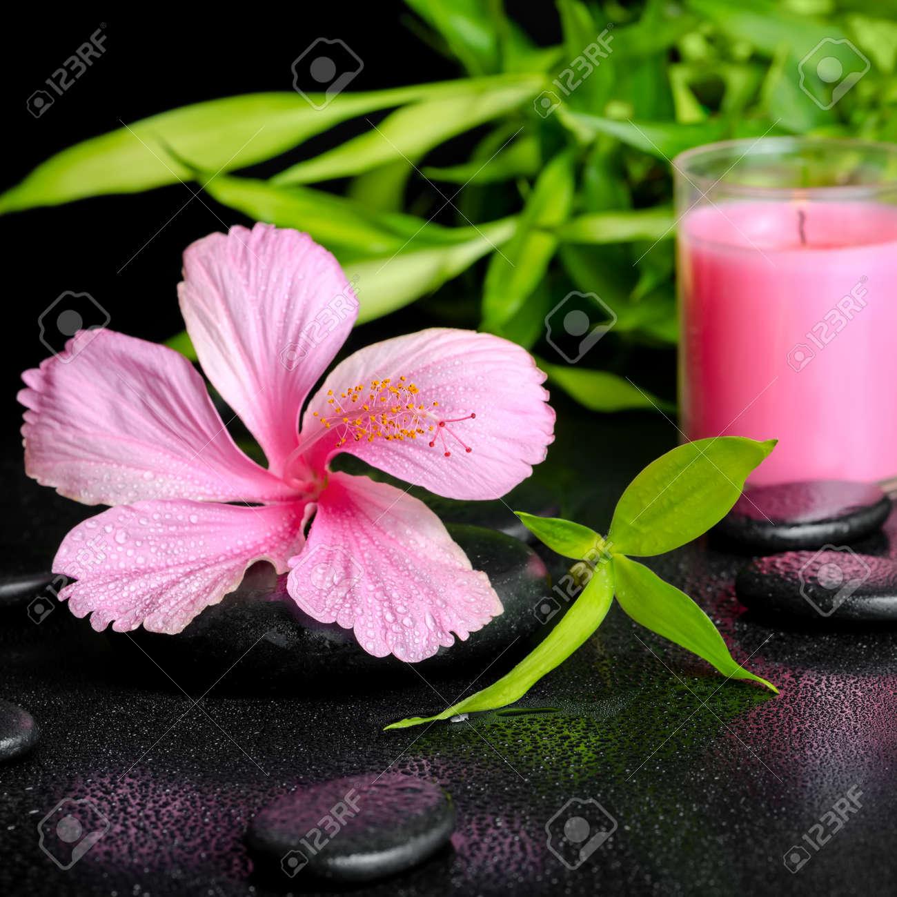 Dorable Uñas De Color Rosa Y Blanco Y Spa Festooning - Ideas Para ...