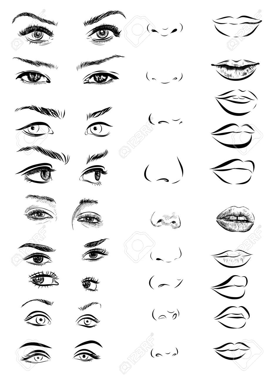 Set of woman eyes, lips, eyebrows and noses as black and white sketching design elements. Vector EPS - 53679800