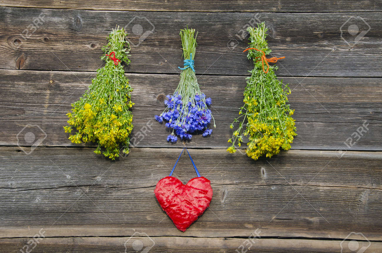 medical herbs flowers bunches and red heart symbol on old wooden farm wall - 20901281
