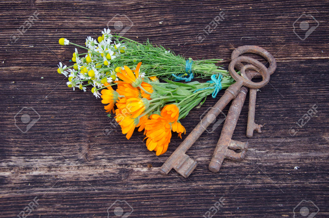 key of health - medical herbs and old tools on wooden backgeound - 33421288