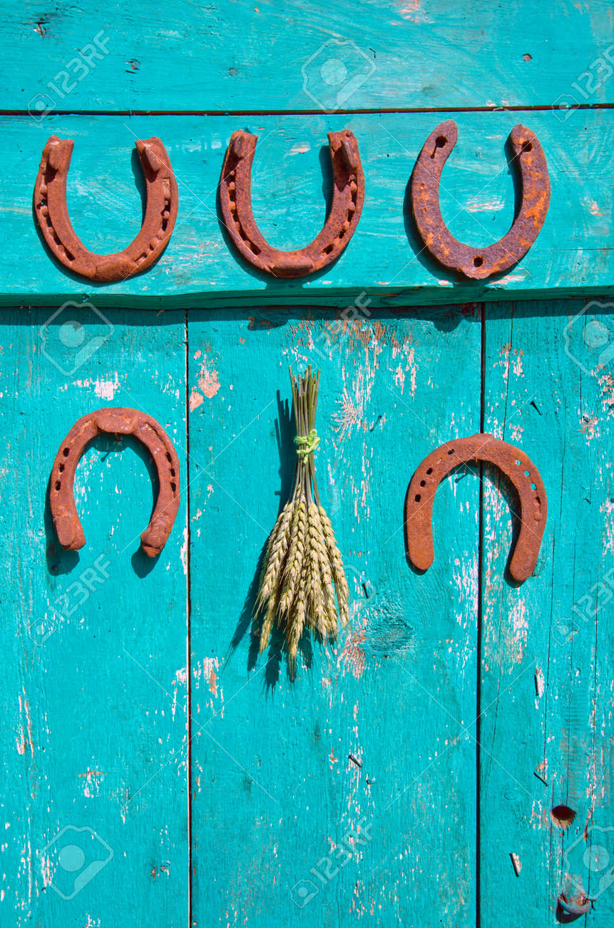 five antique rusty horseshoe and wheat ears bunch on old green wooden farm barn door - 35572136