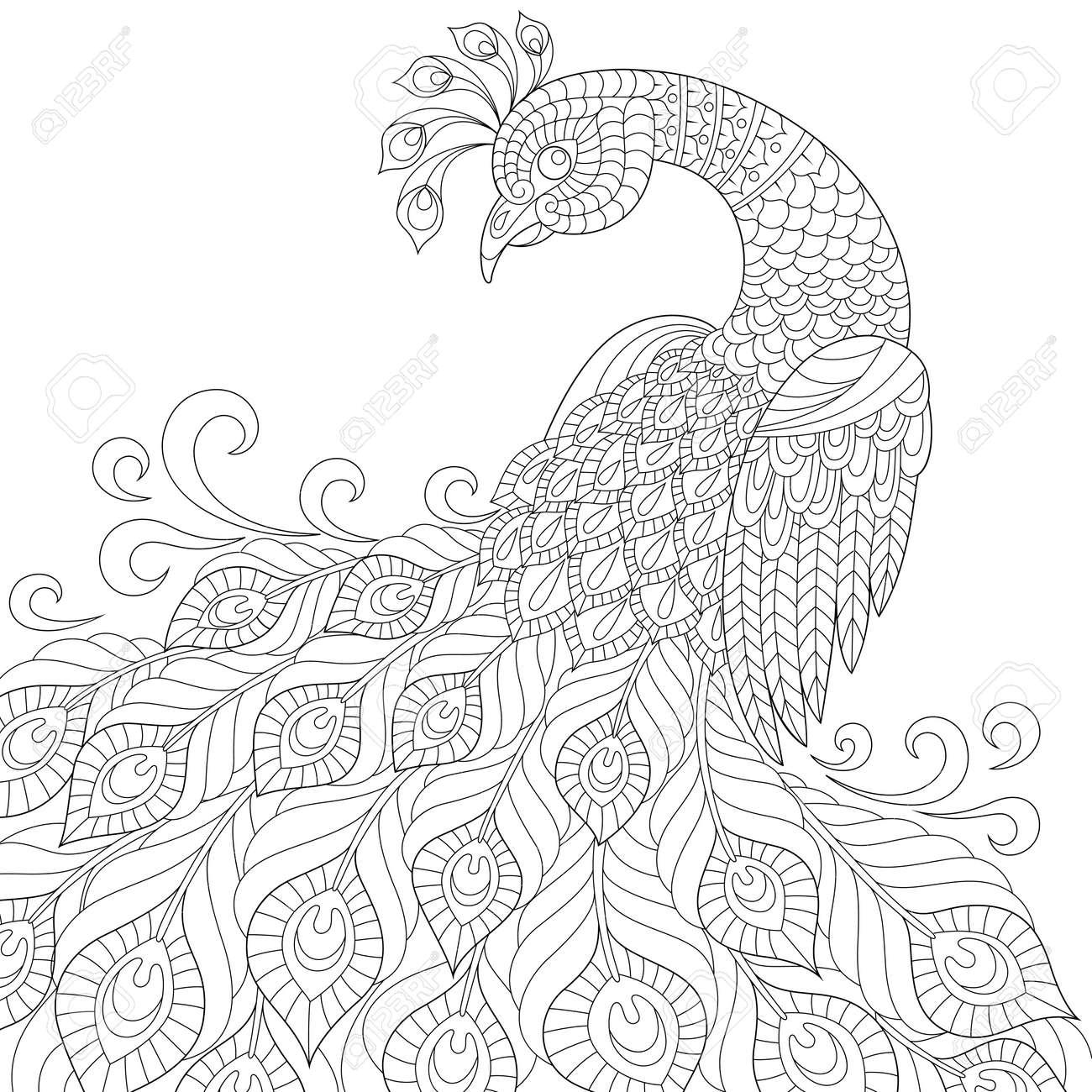 装飾的な孔雀大人の抗ストレスの着色のページ黒と白の手描き落書き