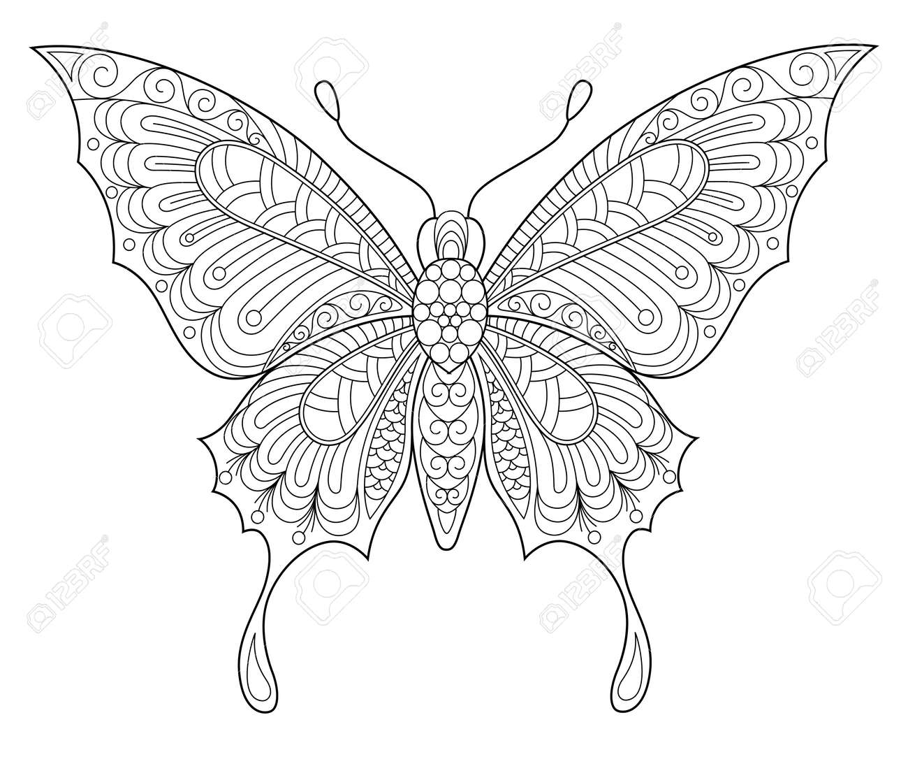 Ausmalbilder Schmetterling : Ein Schmetterling Adult Antistress Ausmalbilder Schwarz Wei Hand