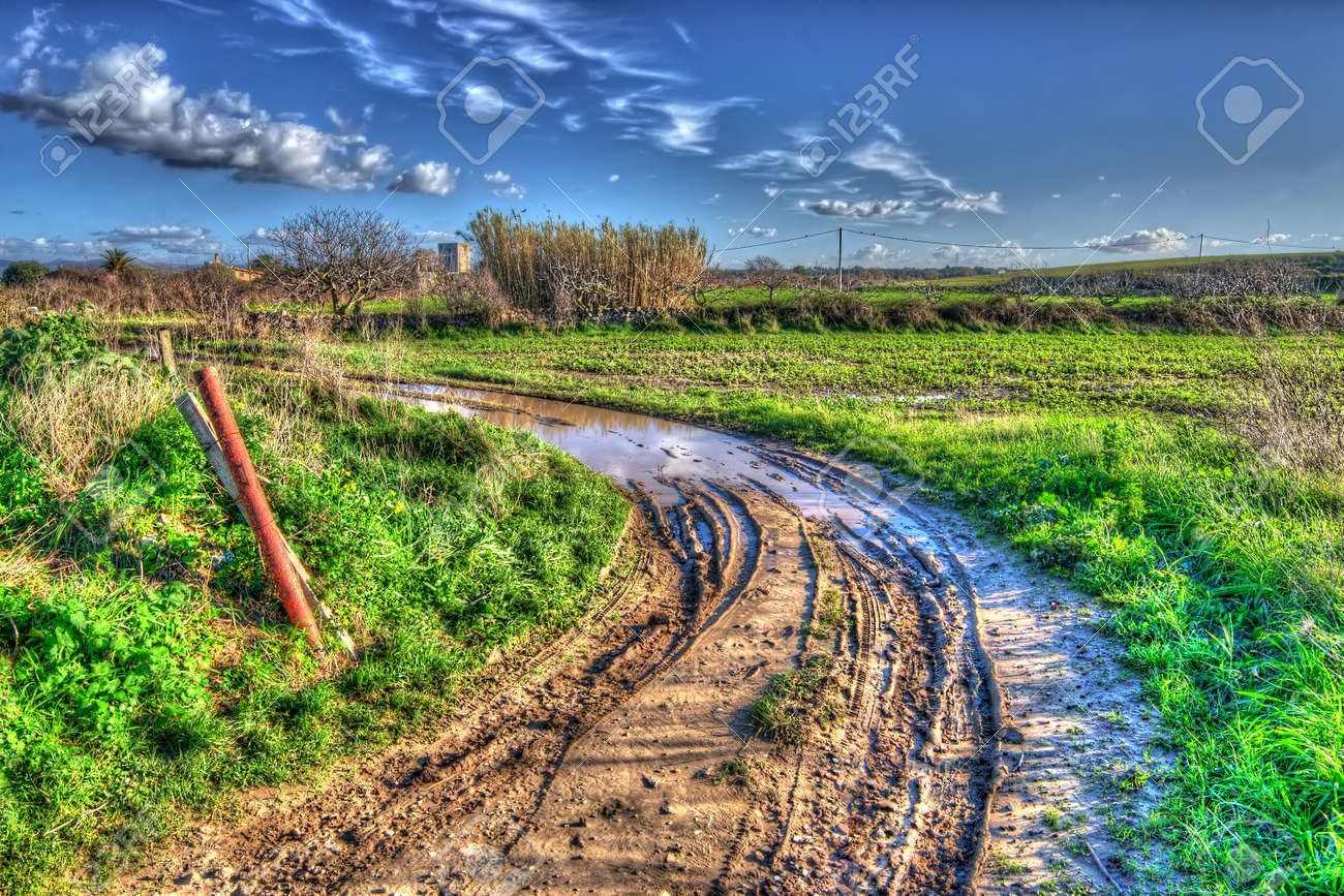 muddy road on a cloudy day - 29957896