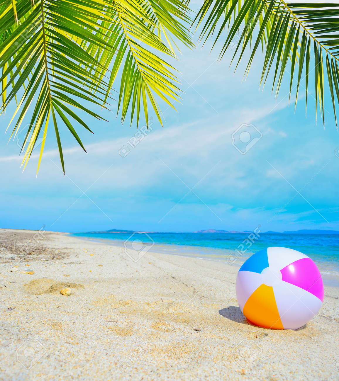 colorful ball under a palm tree by the shore - 42466192