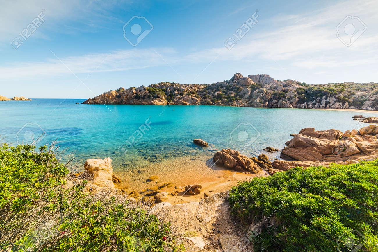 Spalmatore beach in La Maddalena island, Sardinia - 91905659