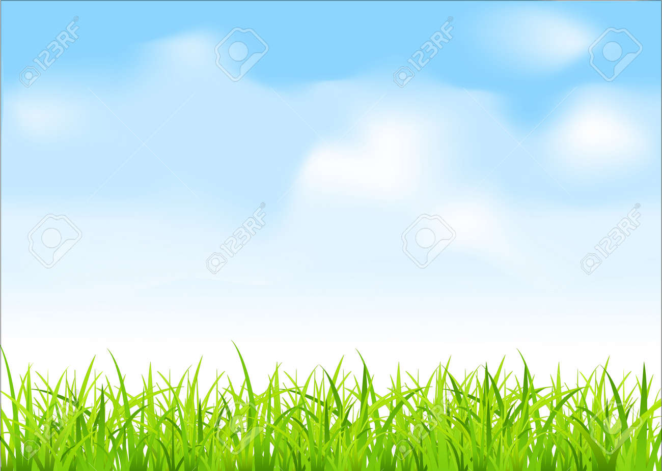 green grass and blue sky Stock Vector - 8702989