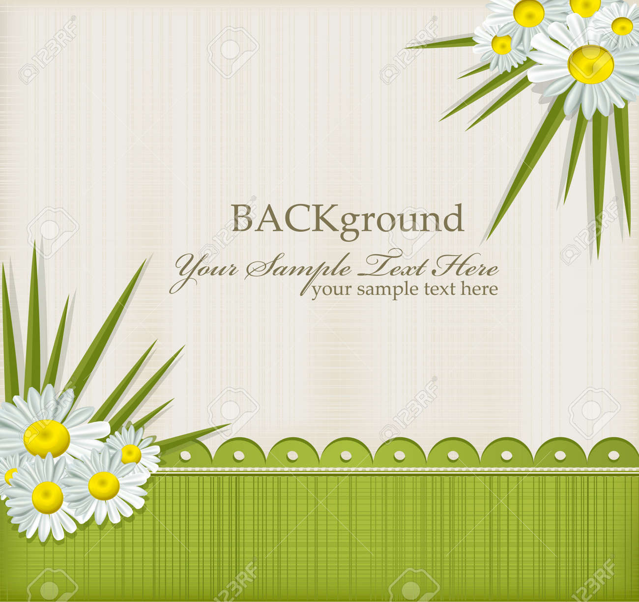 Vector greeting card with daisies and abstracts background Stock Vector - 9103204