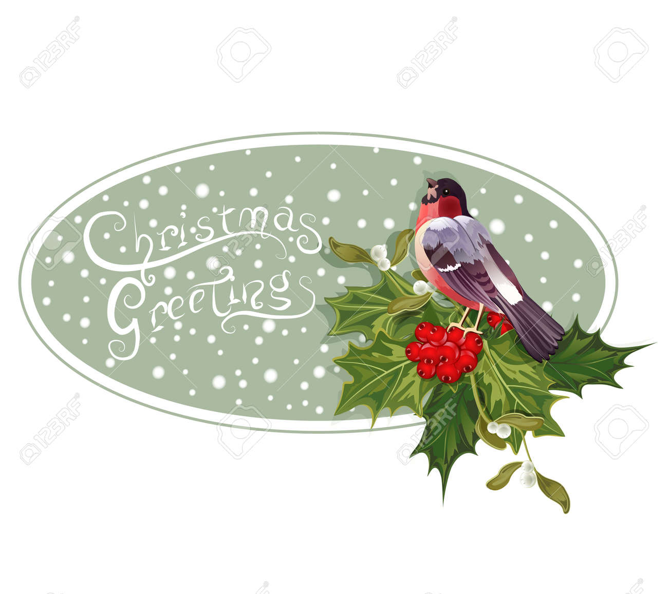 vintage Christmas background with holly and bullfinch Stock Vector - 11471798