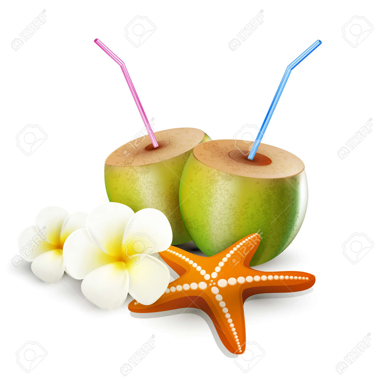 Tropical elements for design on a white background starfish tropical elements for design on a white background starfish coconut drink flowers izmirmasajfo Gallery