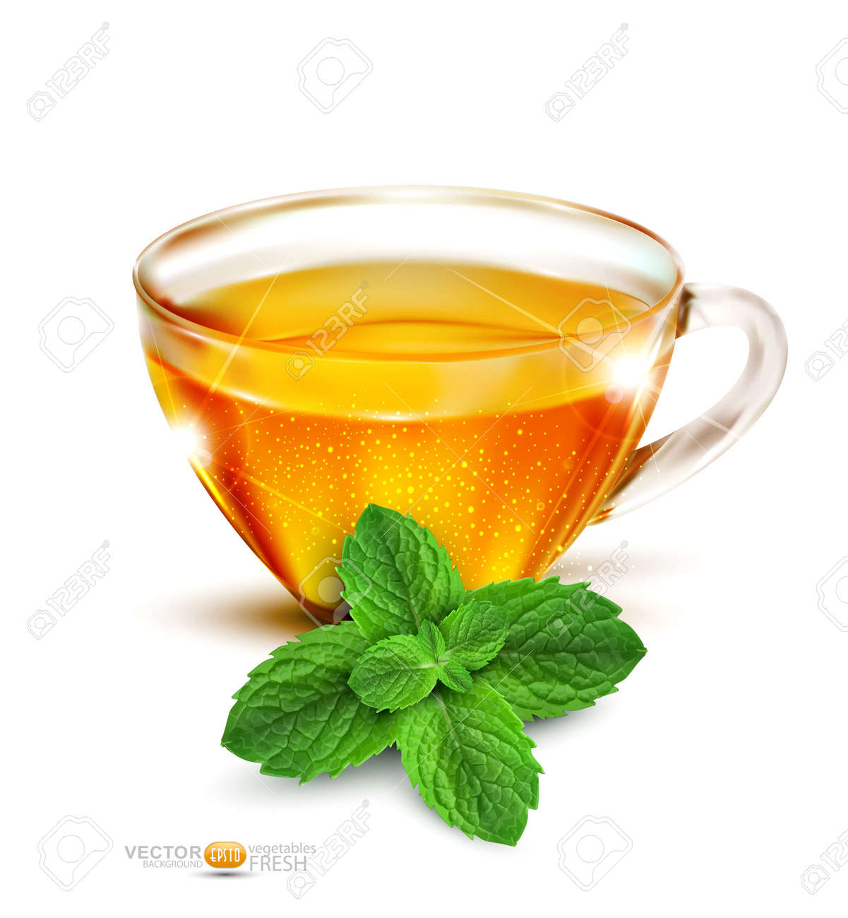 Vector cup of tea with mint leaves on a white background Stock Vector - 13013100