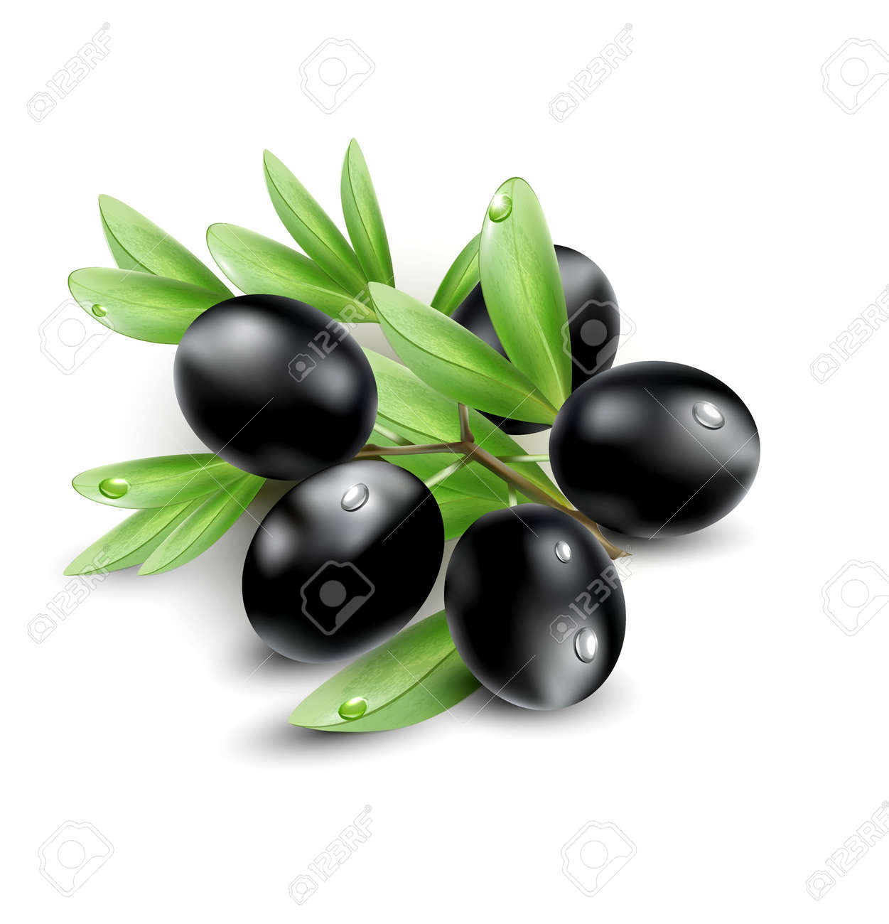 Vector black olives isolated on a white background Stock Vector - 16543764