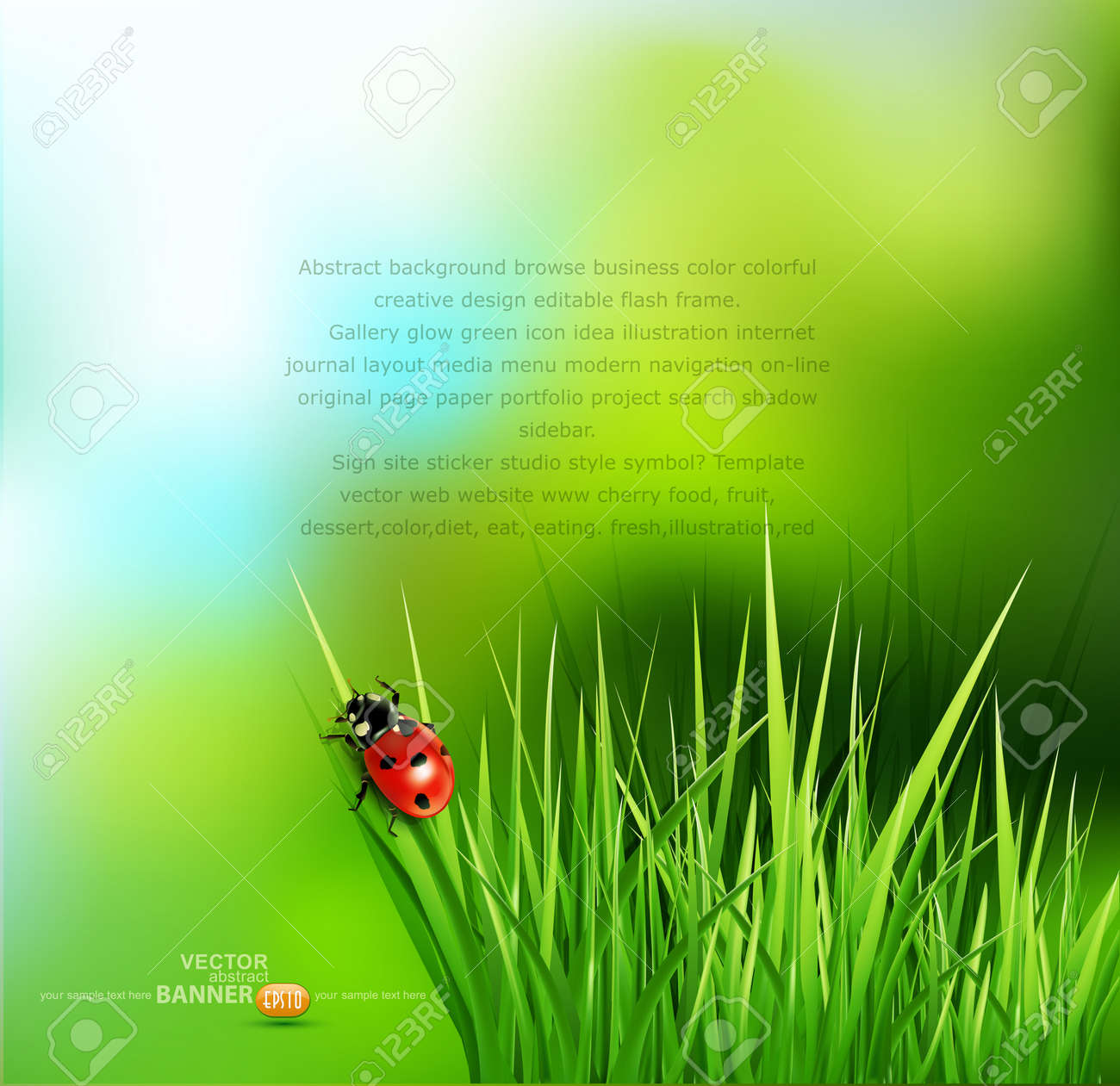 vector background with green grass and ladybug - 17336759