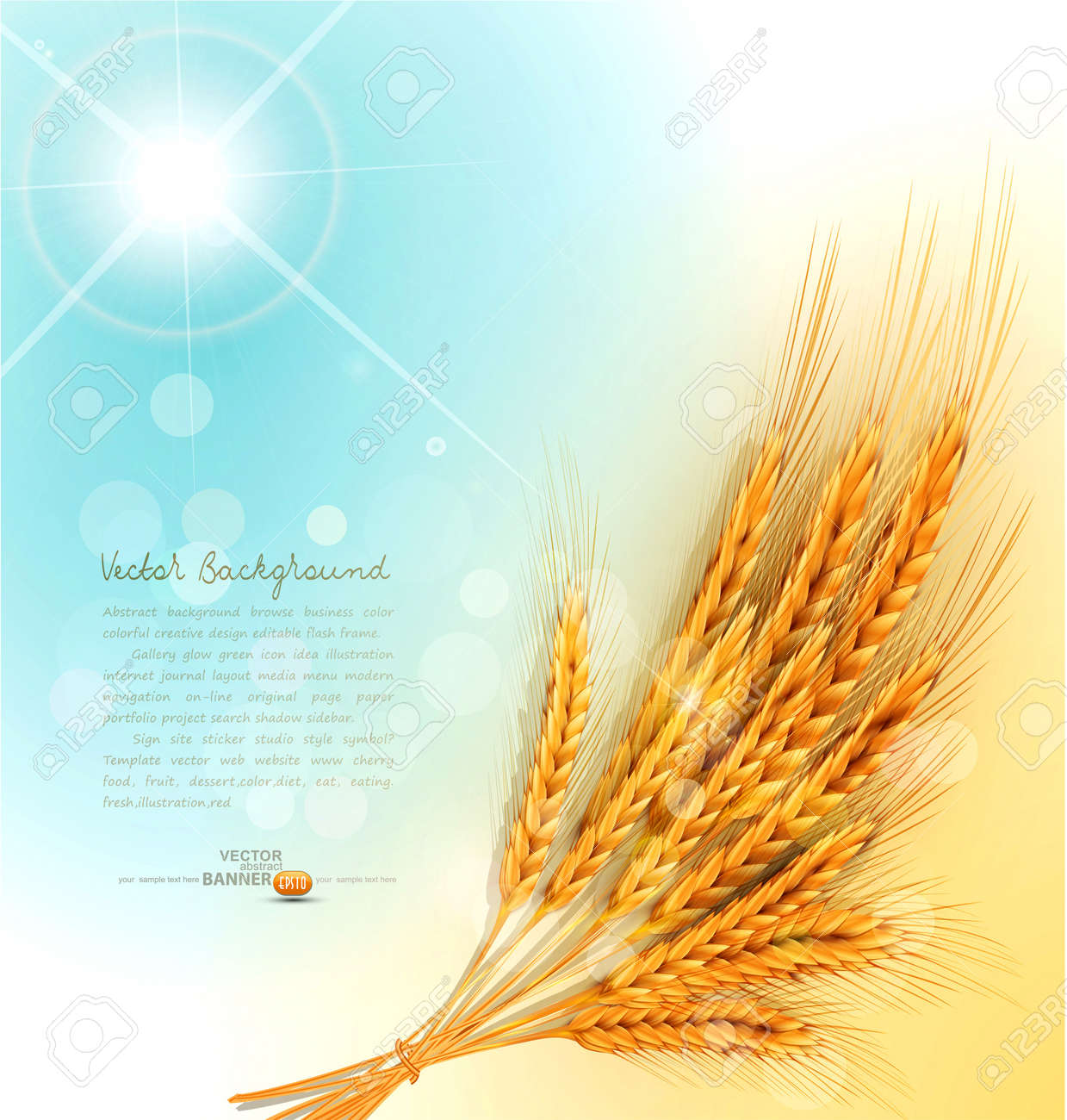 background with a sheaf of golden wheat ears Stock Vector - 20747306