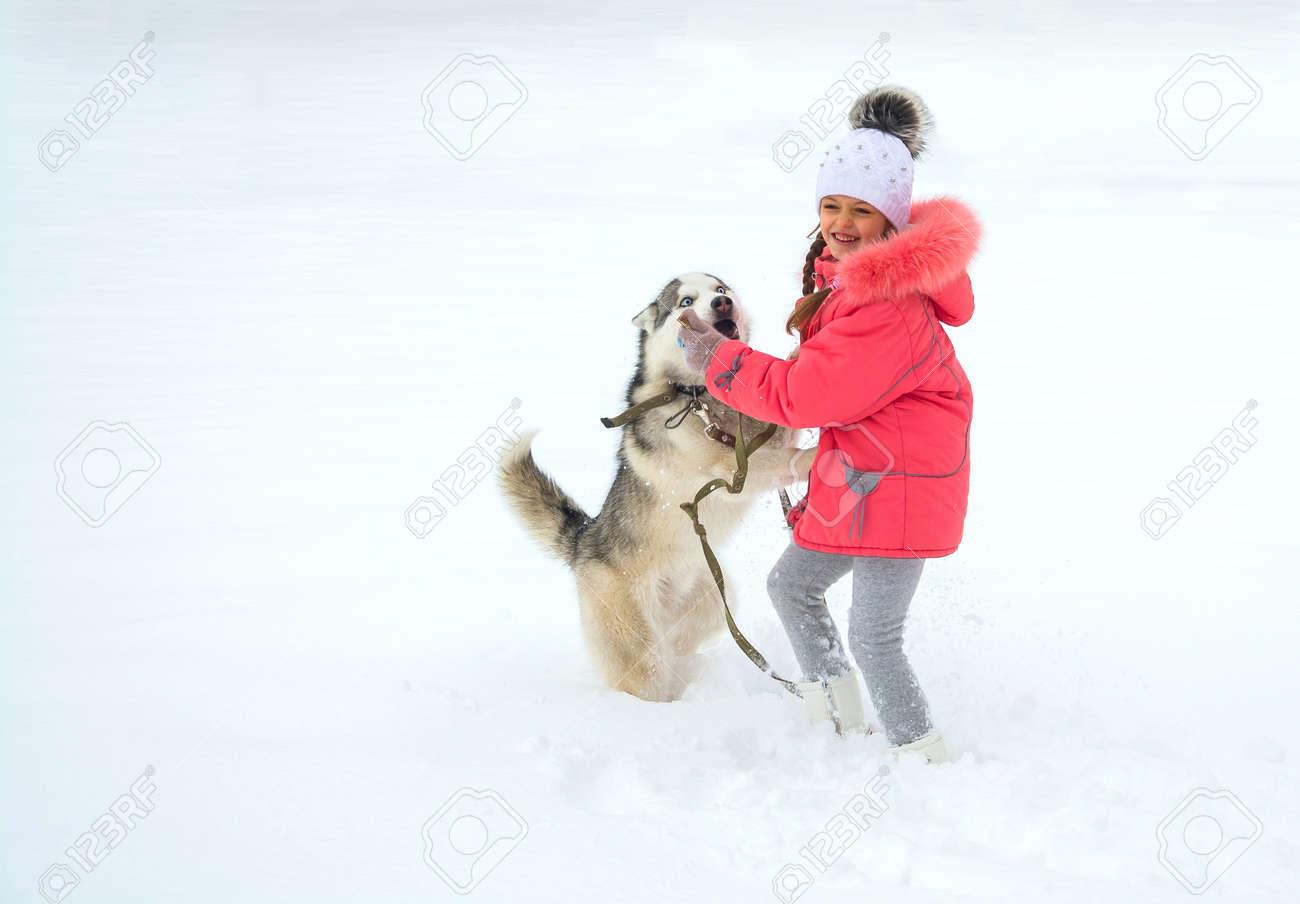 a63be3f2b4d A girl in a pink jacket and hat runs in the snow is feeding a Husky