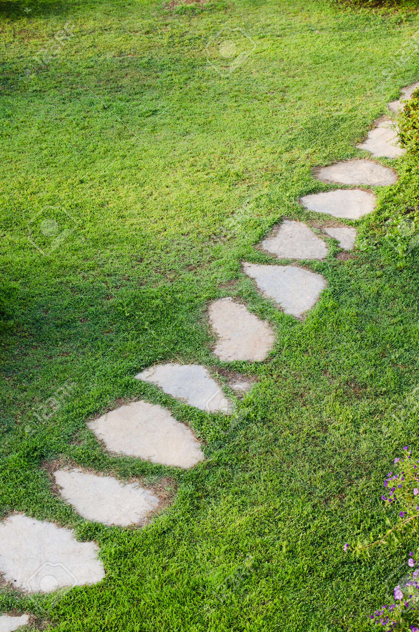 Stone path in garden among green lawn. Grass growing up between and around stones. Summer day - 142784382