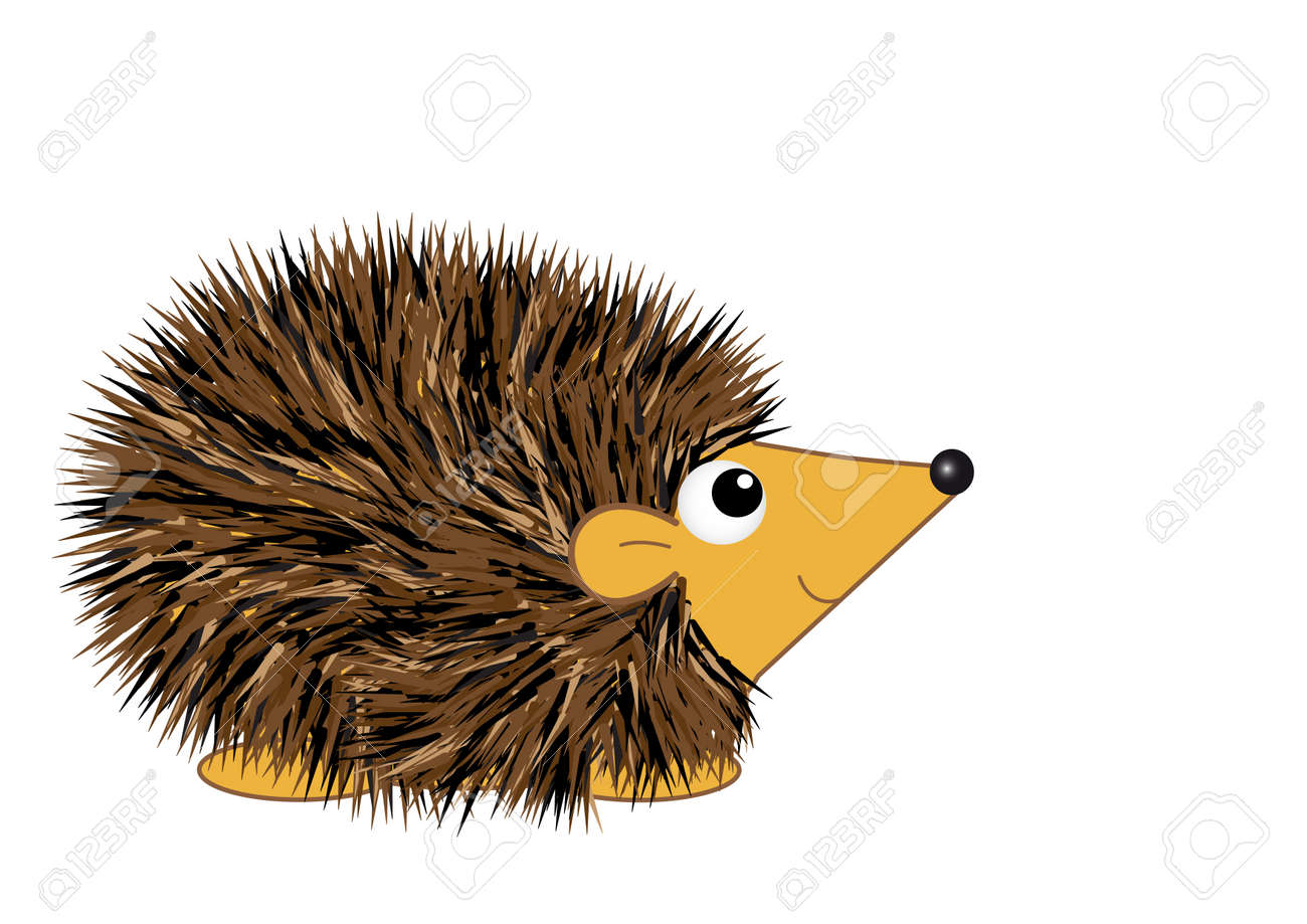 12 426 hedgehog stock illustrations cliparts and royalty free rh 123rf com hedgehog clipart png hedgehog clipart images