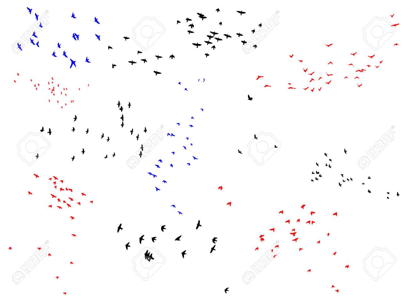 ten bird flocks, easy editable collection for designers Stock Vector - 3499262