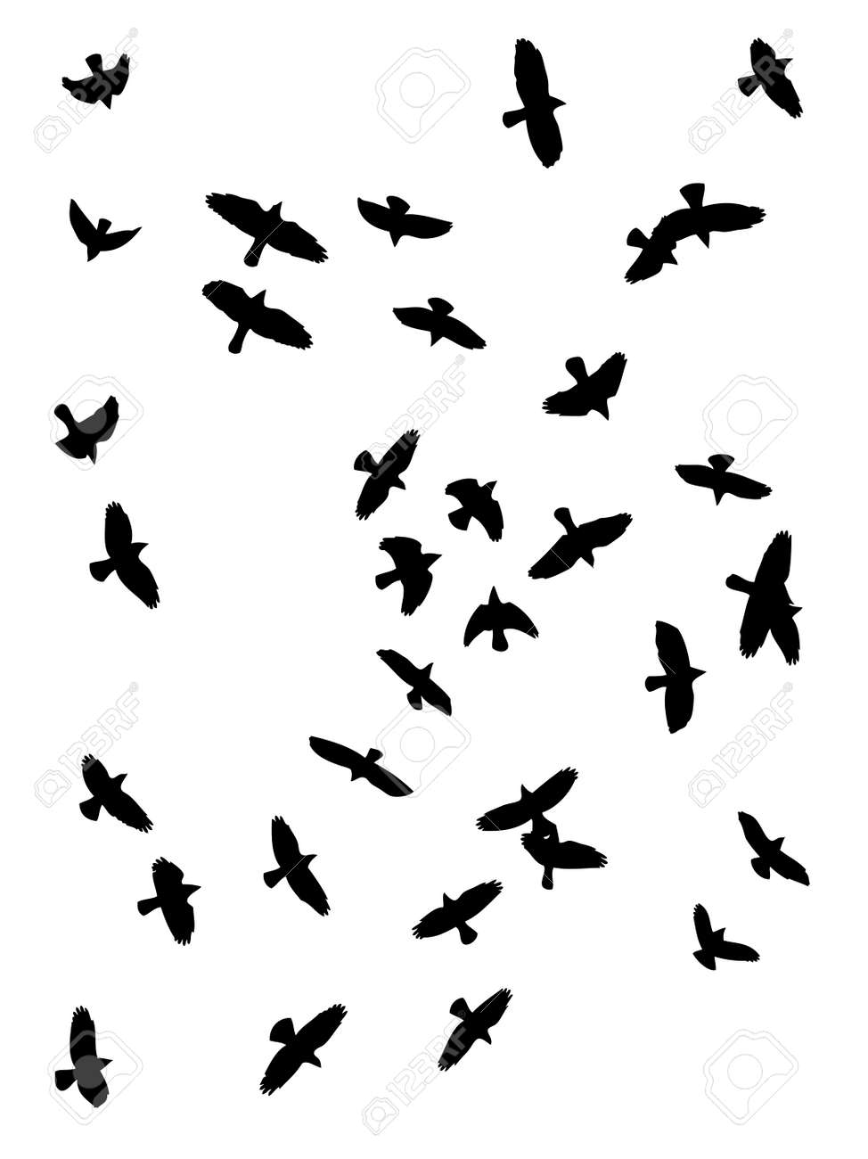 vector silhouette of crows  flying Stock Vector - 3839750
