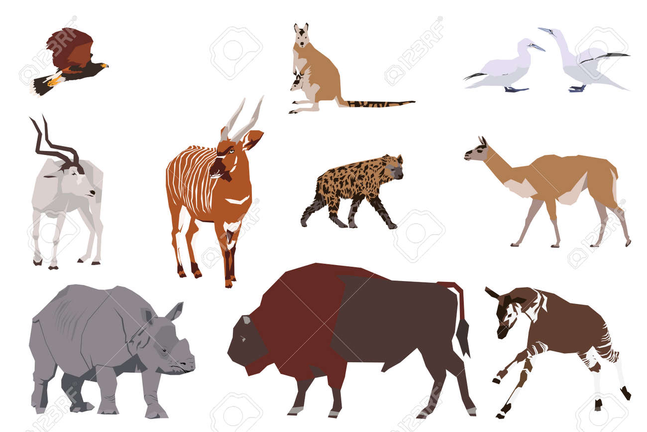 hyena images u0026 stock pictures royalty free hyena photos and stock