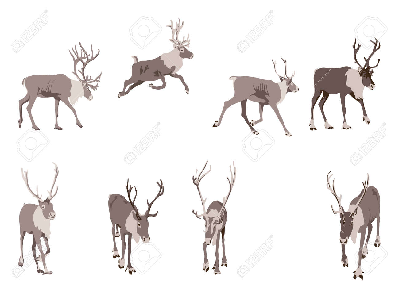 set of eight reindeer colored illustration royalty free cliparts