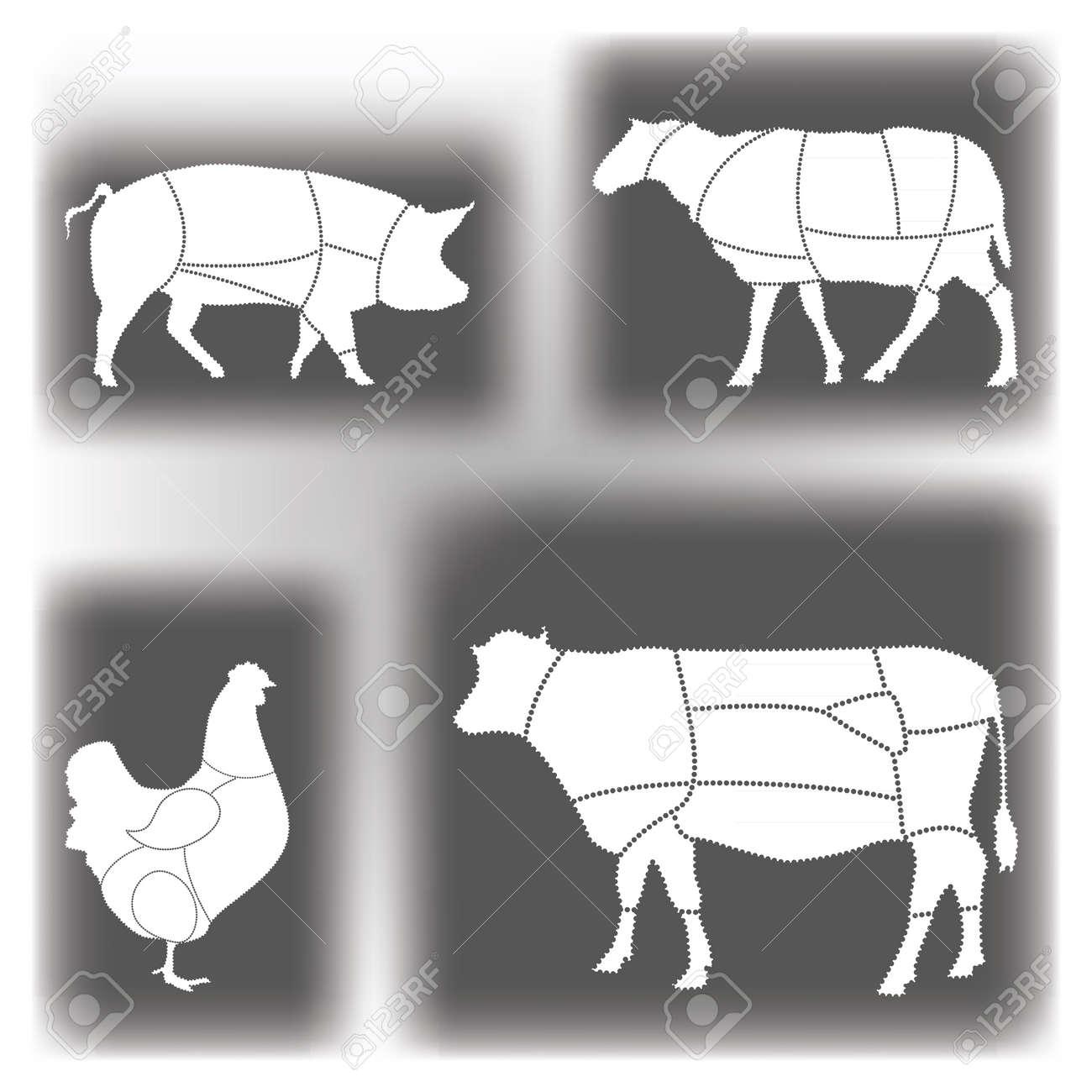 Meat diagrams Stock Vector - 10569603